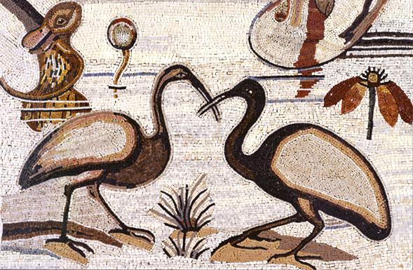 deferranti-micro-mosaics-sacred-ibis-micro-mosaic
